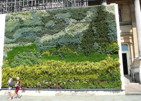 Van Gogh jardín vertical en Londres ~ NQ   Cultivos Hidropónicos   Scoop.it