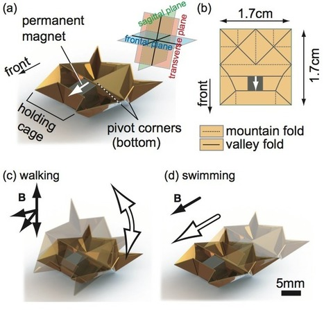 "Tiny Origami Robot Runs, Climbs, Lifts Loads, And Even ""Self-Destructs"" Once ... - DOGOnews 