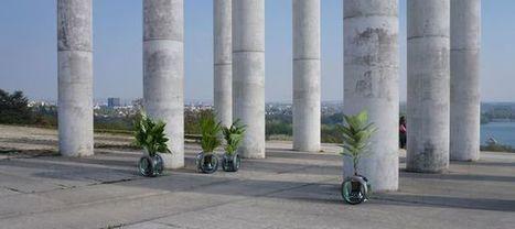 Au Robot Lab, un cyborg végétal va bientôt naître | Une nouvelle civilisation de Robots | Scoop.it