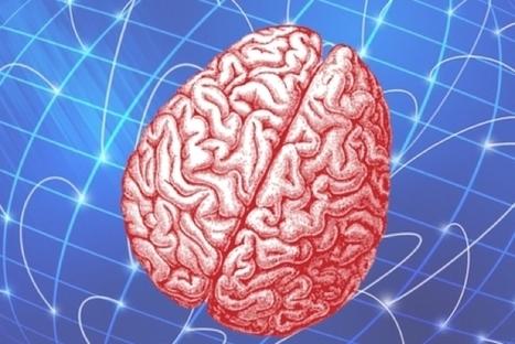 Cet implant de la taille d'un cheveu peut contrôler un cerveau à distance | 3D4Doctor | Scoop.it
