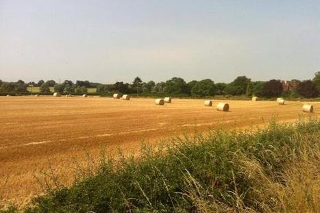Winter barley combined and baled in Bedfordshire | UK #harvest13 | Scoop.it
