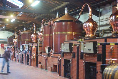 Cognac: Le parc des alambics se modernise - Actualités - La Vigne Mobile   Le Cognac et son vignoble   Scoop.it
