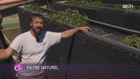 [Suisse] Des anciens décanteurs pour dépolluer les eaux sur La Côte vaudoise | water news | Scoop.it