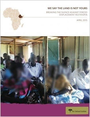 We Say the Land is Not Yours: Breaking the Silence Against Forced Displacement in Ethiopia   Daraja.net   Scoop.it