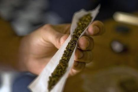 Identifican un mecanismo que provoca psicosis y esquizofrenia por el abuso de cannabis | Educacion, ecologia y TIC | Scoop.it