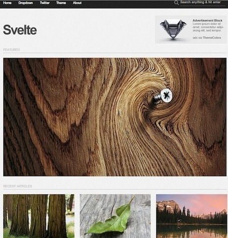 25 Best Free WordPress Photography Themes   How To Take Better Photographs   Scoop.it