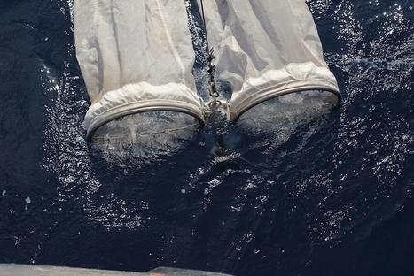 En Méditerranée, des fragments de plastique à chaque relevé de filet... | Toxique, soyons vigilant ! | Scoop.it