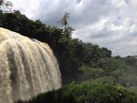 Découverte la cascade d'Eléphant à Dalat, Vietnam | The Blog's Revue by OlivierSC | Scoop.it