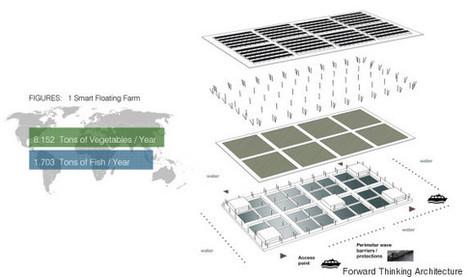 Cette ferme solaire flottante pourrait changer l'agriculture   Bazar citoyen   Scoop.it