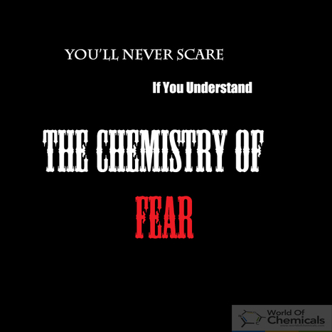 Chemistry of fear | See What Chemical Causes Fear | Article On Chemistry -  Find Out Chemical Industry Best Articles only at World Of Chemicals | Scoop.it