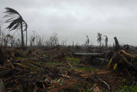 Disasters Poised to Sweep Away Development Gains — Global Issues | Climate - Water - Ecology - People and Sustainability post Rio+20 | Scoop.it