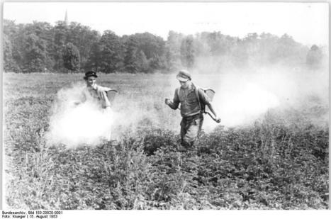 Pesticides: bannis, ils resurgissent du passé - Techno-science.net | Abeilles, intoxications et informations | Scoop.it