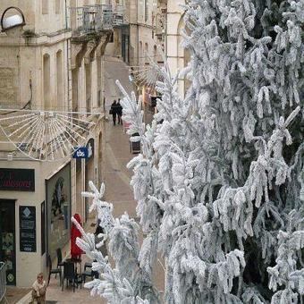 Niort. Avec son sapin de 12 mètres, la rue Victor-Hugo est parée pour Noël   Niort un centre ville attractif   Scoop.it