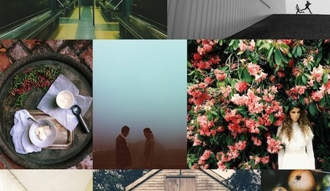 [Bon App'] VSCO Cam, la retouche photo ultra-poussée et simplifiée | Start-up & Co | Scoop.it