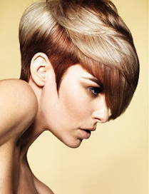 Wicks  Fashion Color 2012 | Haircut & Hairstyles | Scoop.it