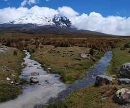 Glacier-fed river systems threatened by climate change | Biodiversity IS Life  – #Conservation #Ecosystems #Wildlife #Rivers #Forests #Environment | Scoop.it