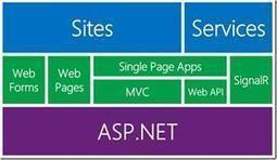 Asp .Net Developer | IT developer | Scoop.it