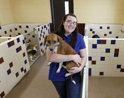Critter camp: Kids can learn to care for pets at humane society - Waterloo Cedar Falls Courier | Laws for Paws | Scoop.it