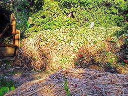 Composteurs : lequel choisir ? - Gerbeaud.com | Compostage : Déchets verts & Biodéchets | Scoop.it