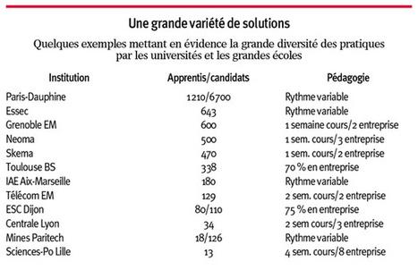 Des bâtons dans les roues de l'alternance - Le nouvel Economiste | reforme apprentissage | Scoop.it
