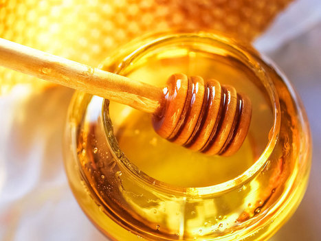 Things You Should Know About Honey | Healthy Living | Scoop.it