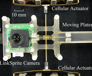 Researchers at Georgia Tech develop robot cameras that replicate eye movement | The Robot Times | Scoop.it