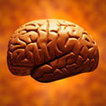 120 Ways to Boost Your Brain Power | Whole Brain Leadership | Scoop.it