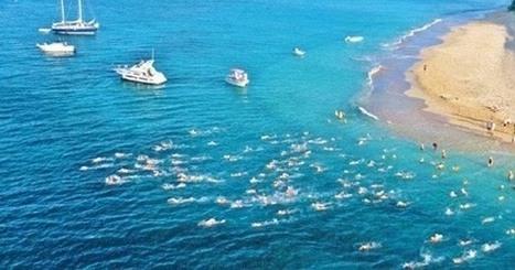 2016 St Croix USVI Coral Reef Swim | Caribbean Island Travel | Scoop.it