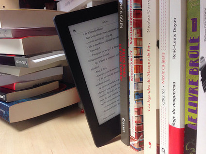 Allemagne : le prix unique assuré pour les livres numériques - Actualitté.com | Trucs de bibliothécaires | Scoop.it