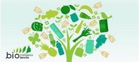 TIC et développement durable | La Fonderie | 1STMG NTIC | Scoop.it