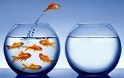 Si vous voulez gagner la confiance de vos clients, apprenez d'abord à les connaitre | DE LA PERFORMANCE A L'EXCELLENCE | Scoop.it