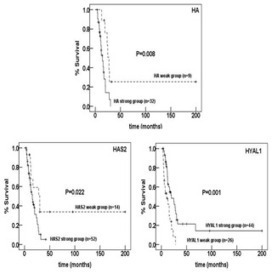 Prognostic Impact of Hyaluronan and Its Regulators in Pancreatic Ductal Adenocarcinoma | Cancer Biomarkers | Scoop.it