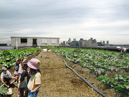 Farming Very Creatively In Very Urban Spaces | EarthTechling | De mogelijkheden van onze daken | Vertical Farm - Food Factory | Scoop.it