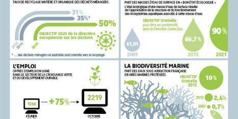 Infographie - Les avancées du développement durable en France   Responsabilité Sociétale des Entreprises   Scoop.it