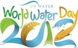 Aquaponics and World Water Day | The Aquaponic Source | Wellington Aquaponics | Scoop.it