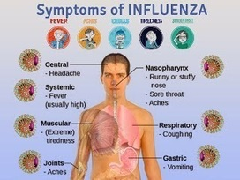 What are the flu symptoms | Flu symptoms 2013: Treatment of flu! Flu epidemic prevention! | Scoop.it