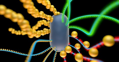 Your Future Couch Could Be Made of Living Cells | Educational Technology | Scoop.it