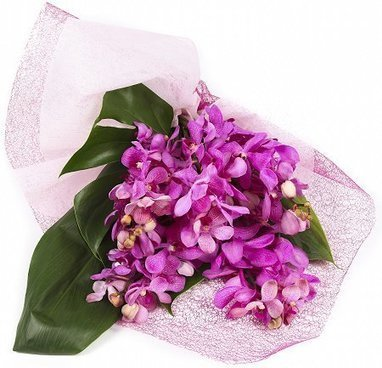 Ingenuity, Quality, and Reliability is What FBN Aims to Offer | Online Flower Delivery in India | Scoop.it