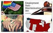 The Year 2013: A Milestone Year for LGBT Rights - My Law Consultant | Information about California Employment Laws | California Employment Law Facts and News | Scoop.it