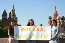 Russian Food Security Experts Fight GMO Registrations in Supreme Court | Health Supreme | Scoop.it