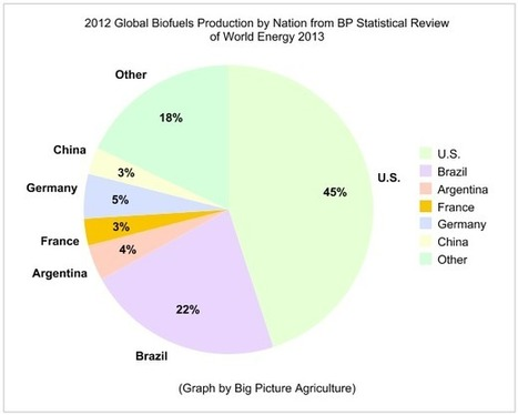 Graph of Top Global Biofuels Producing Nations in 2012 | Big Picture Agriculture | Plant Breeding and Genomics News | Scoop.it