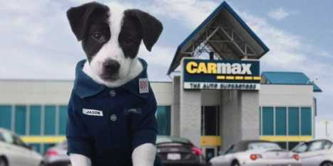 CarMax's 'Rudy'-Inspired Super Bowl Ad Comes In Both Human And Puppy Versions   International Auto Market Insights   Scoop.it