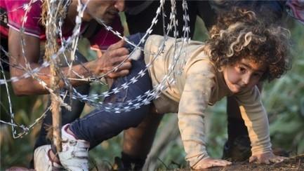 Refugees Don't Cause Fascism, Mr. Timmermann – You Do By Dan Glazebrook | Saif al Islam | Scoop.it