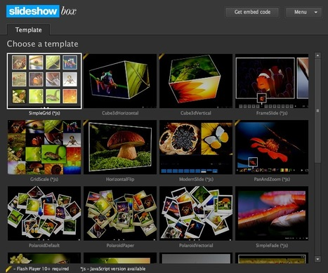 24 Photo Slideshow Gallery Templates That Work With Your Image RSS Feed: Slideshow Box | Curiosidades de la Red | Scoop.it