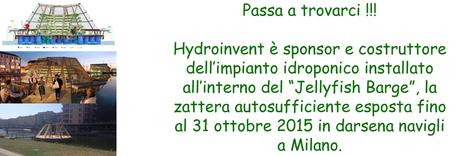 Hydroinvent, coltivazione fuori suolo idroponica e aeroponica   Idroponica   Scoop.it