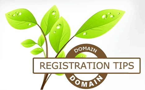 Importance of Domain Name Registration for a Website | ZERO DESIGNS PVT. LTD | Scoop.it