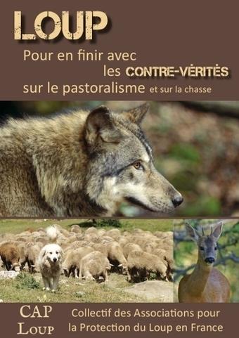 Le livret CAP Loup réactualisé -Douze pages pour tordre le coup aux idées reçues !   De Natura Rerum   Scoop.it