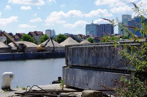 Grouwels: '3.000 jobs op komst in haven' | Investment property | Scoop.it