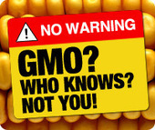 Proposition 37, la Californie vers l'étiquetage des OGMs ? | agro-media.fr | Actualité de l'Industrie Agroalimentaire | agro-media.fr | Scoop.it