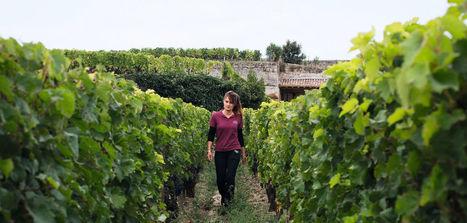 A lire avec un bon verre ;-) | My wine, heritage and communication press review | Scoop.it